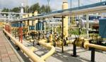 Gazprom Export: Analizujemy wniosek PGNiG o obniżenie ceny gazu