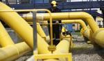 Polak będzie szefem gazociągów na Ukrainie