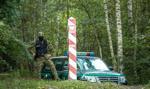 Kolejne strzały przy granicy Polski z Białorusią