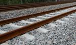 Finowie po ponad 30 latach wznowili transport kolejowy do Japonii