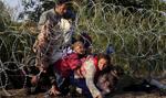 Szwecja zapowiada wydalenie z kraju od 60 do 80 tys. imigrantów