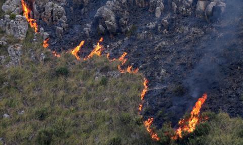 Pożary w rejonie Katanii i Palermo na Sycylii. Karabinierzy wszczęli śledztwo