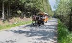 Rewolucja w Tatrach. Ruszają testy hybrydowych wozów konnych
