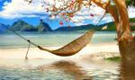 Wybierasz się na wakacje z Travelplanet? Uważaj na oszustów