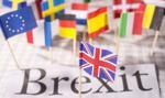 Brytyjska Komisja Wyborcza bada rolę Rosji w referendum ws. brexitu