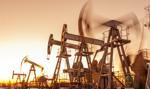 Biden wstrzymuje dzierżawę terenów federalnych pod wydobycie ropy
