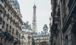 Francja chce sadzić drzewa.