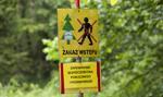 Najwyższy stopień zagrożenia pożarowego w większości lasów w Polsce