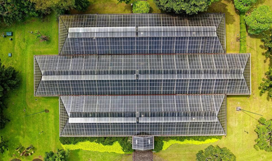 Green Genius kupi projekty farm fotowoltaicznych i biogazowni w Polsce