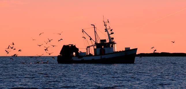 Gróbarczyk: Najbliższe trzy lata będą fatalne dla polskiego rybołówstwa