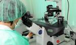 W Krakowie samorząd chce dofinansować zabiegi in vitro