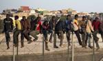 UdSC: Polska nadal traktowana przez cudzoziemców jako kraj tranzytowy