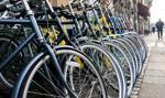 Polska w czołówce producentów rowerów w UE