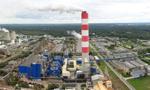 Strata netto Grupy Azoty w II kw. 39,3 mln zł, konsensus PAP Biznes zakładał 19,6 mln zł zysku