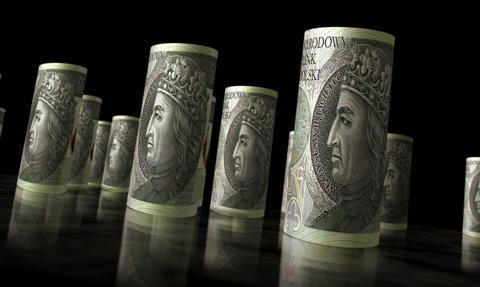 Trzciołek: Pod koniec roku złoty będzie nieco silniejszy