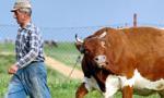 Rolnicy zablokują krajową dwójkę pod Siedlcami