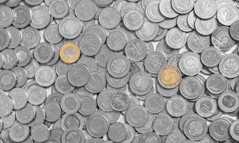 Spółka Analizy Online wypłaci 1 zł dywidendy na akcję