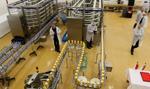 Polscy mleczarze optymistyczni w sprawie eksportu do Chin