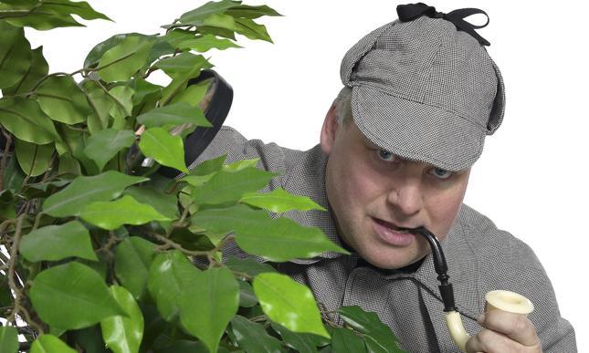 Niemcy: pracodawcy korzystają z usług detektywów, aby kontrolować pracowników