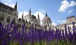 EuroPKB: Węgry rosną najszybciej. Polska w czołówce