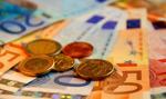 Większość Polaków ocenia, że przyjęcie euro byłoby niekorzystne - TNS Polska